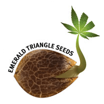 Emerald Triangle Seeds - Seed Bank