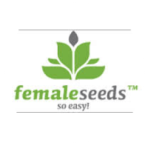 Female Seeds - Seed Bank