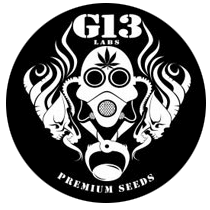 G13 Labs Seeds - Seed Bank