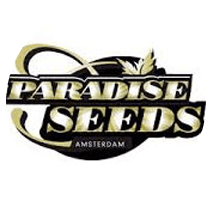 Paradise Seeds - Seed Bank