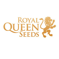 Royal Queen Seeds - Seed Bank